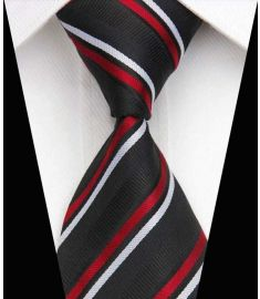 Elegant Silk Polyester Man Business Wedding  Tie Option 20