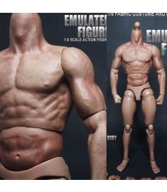 1/6 Scale Action Figure Male Nude Muscular Body 12 Plastic Toy for TTM18/19""